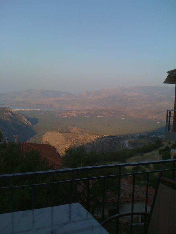 View in Delphi
