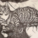 Cats; Lithography