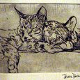 Cats; Intaglio Print