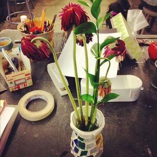 dying flowers