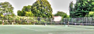 TennisCover