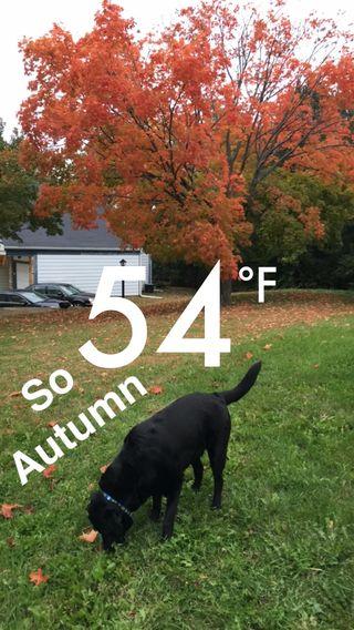 So Autumn