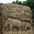 Elephant carvings