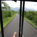 On safari!!