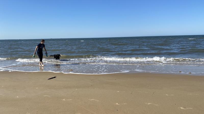 Beach walking with Jessi