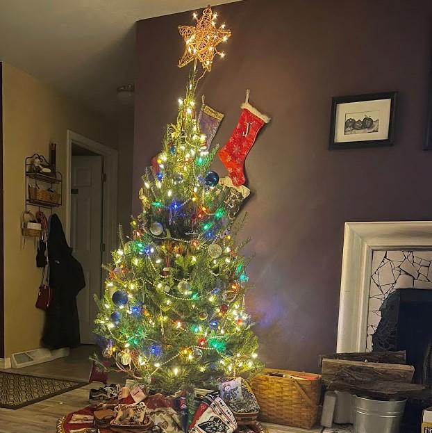 Xmas Tree (2)