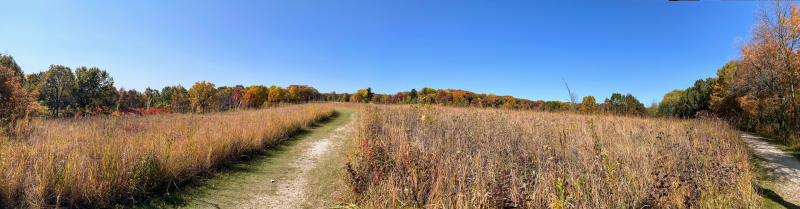 Owen Woods Pano